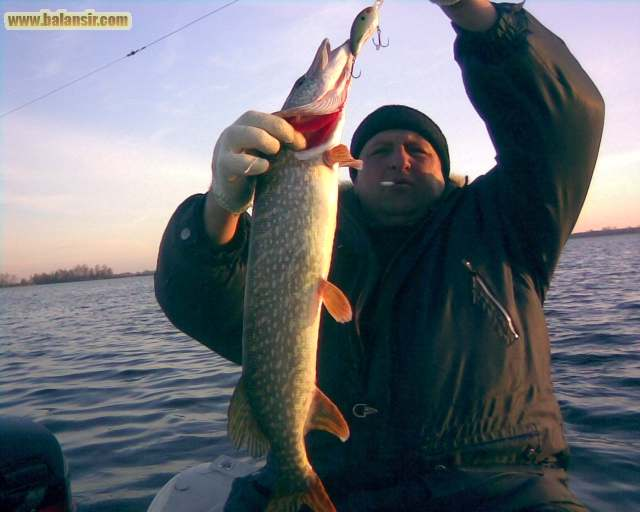 рыбалка в рязани в мае
