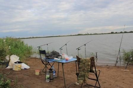 михайловские пруды рыбалка официальный сайт