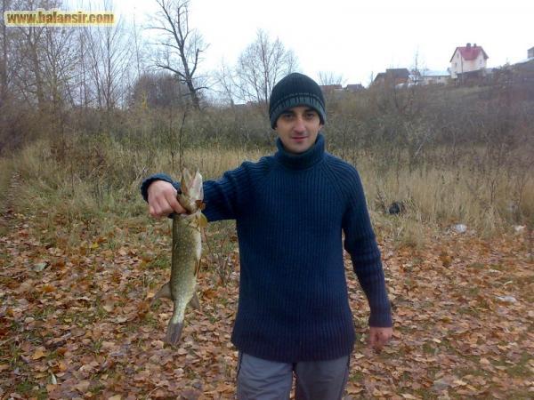 Никитина рыбка